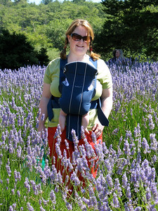 Holly communes with the lavender