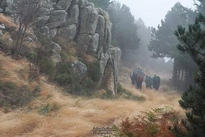 WE 11 Novembre au Mont Aigoual (30)