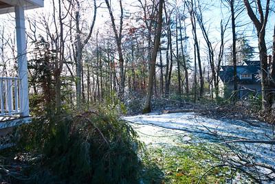 New England Ice Storm - Nikon pics