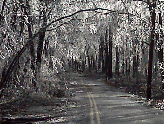 More low hanging branches.  Ice falling as the sun came out and started to melt things.