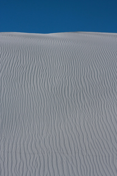 A thousand lines of wind travel away to the top of a dune.