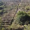 2008Peru165