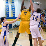 Western's Christian Pierce (14) tries to block a rebound by Nelson County's Trevor Martin (15). photo Ashley Twiggs