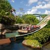 Busch Gardens 049