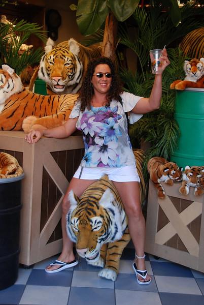 Busch Gardens 136