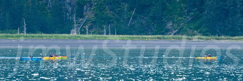 Kenai Kayakers