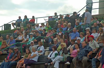 The Crowd 2009 Celtic Fest
