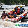 Wild Rafting with AceAdventures