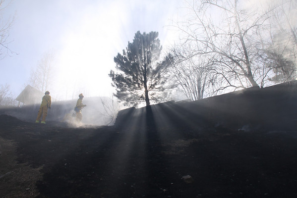 Orchard Brush Fire