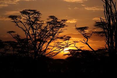2009_Kenya