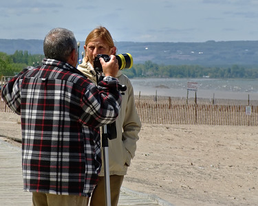 Watching Over the Nesting Plovers