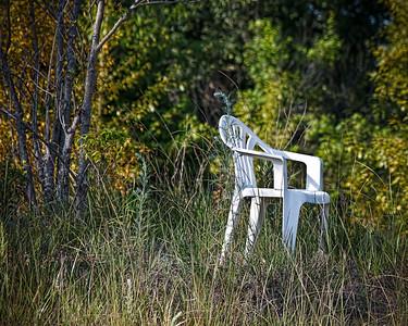Summer Solitude