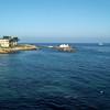 Monterey Bay, Monterey Aquarium