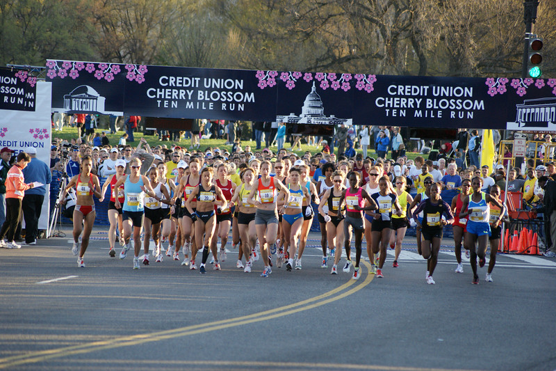 Cherry Blossom 10 Mile - Photo by RJ Spalding