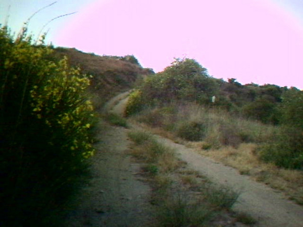 Earl Canyon