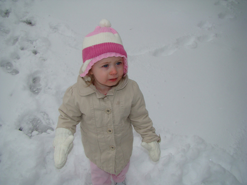 Abby was a little unsure of how to walk in the snow at first.  I think it freaked her out how you sink in.