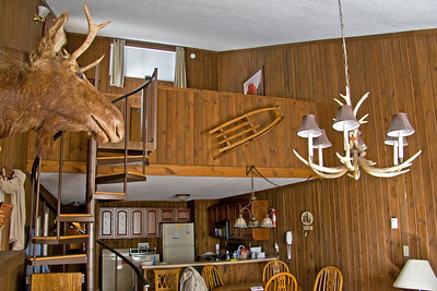 The living room, kitchen, and loft of the townhouse.  The moose was awesome