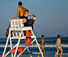 Ahh, the life of a lifeguard!