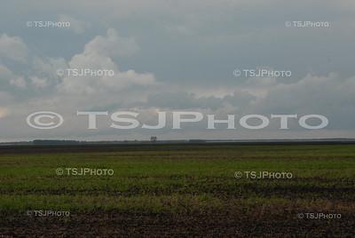 TSJ_0007