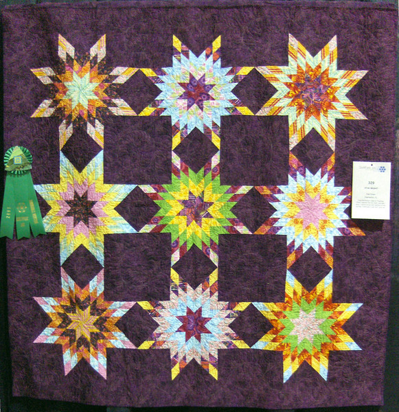 Honorable Mention<br /> Star Bright<br /> Pam Evans