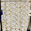 Best Machine Quilting<br /> Misty Mountain Flowers<br /> Barbara Meunier