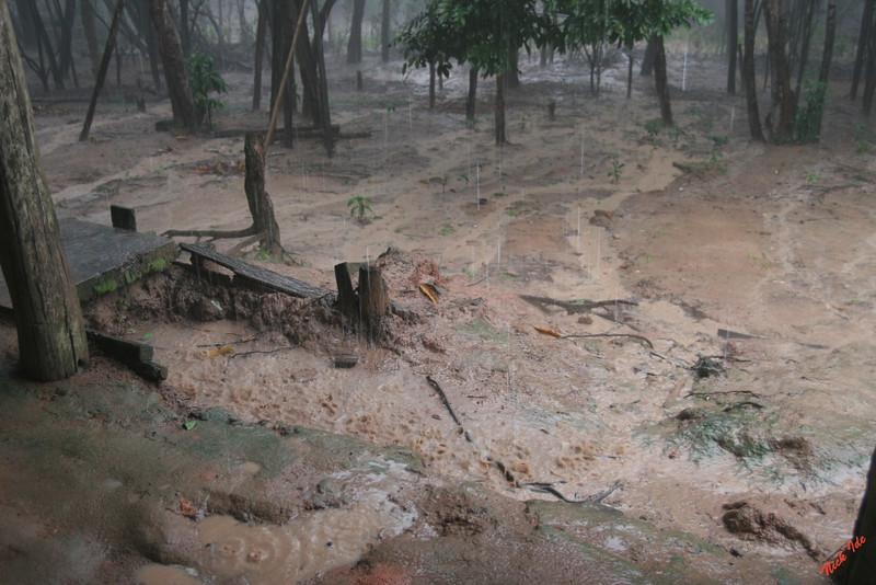 Tropical rain storm in the Amazon jungle.