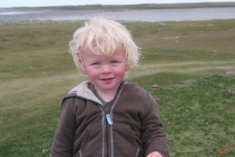 "This little fellow may be ""President"" of the Falkland Islands some day."
