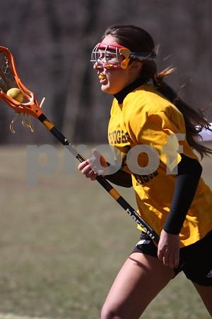 Lenape Valley vs Bergen County Technical School Girls Lacrosse