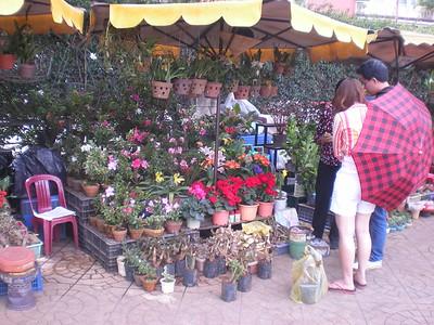 Dalat - Central Market - Around town
