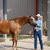 2009 horse shows : 6 galleries with 297 photos