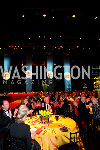 Detail, 2009 Wolf Trap Ball - Germany Celebrates 20 Years of Freedom Without Walls - photo by Tony Powell