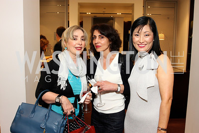 Feri Oveissi, Keyvan Sayadian, Young Kim. Photograph by Tony Powell