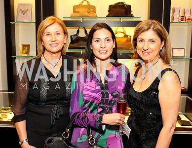 Voula Tavoulareas, Luisa Zarate, Fariba Jahanbani. Photograph by Tony Powell