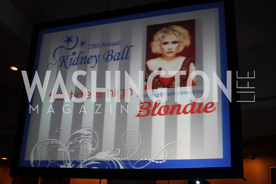 29th Annual Kidney Ball. November 21, 2009. Photo's by Michael Domingo