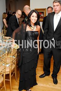 """Lindsay Ellenbogen"". The Phillips Collection Gala. May 15, 2009. Photos by Kyle Samperton."