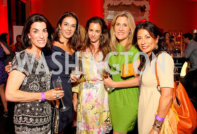 Tracy Bernstein, Shelly Galli, Gwen Holliday, Elizabeth Thorp, Tina Rogunno, Photograph by Tony Powell