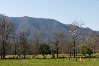 The next day, we take a gander through Cade's Cove