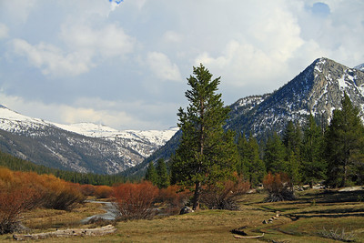 Lyell Fork of the Tuolumne River in Lyell Canyon with Potter Point on the Right.