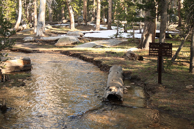 At the end of our walk this trail at the Rafferty Creek Junction on the JMT was flooded where it had not been on our way in - testimony of the power of the day-time sun to melt snow and raise the rivers.