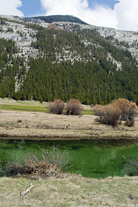 The Tuolumne in Lyell Canyon. It was that green.