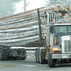 Citizen photo by Brent Braaten A loaded logging truck turning into the south scales on Highway 97 Monday morning.