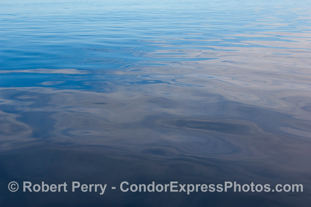 Oily glass - Beaufort sea state zero;  80 miles offshore from Santa Barbara.