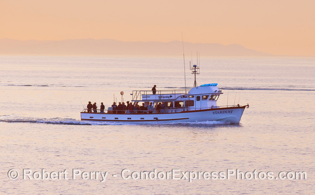 The sportfishing vessel 'Stardust' departs Santa Barbara at dawn in search of the wiley rock cod.