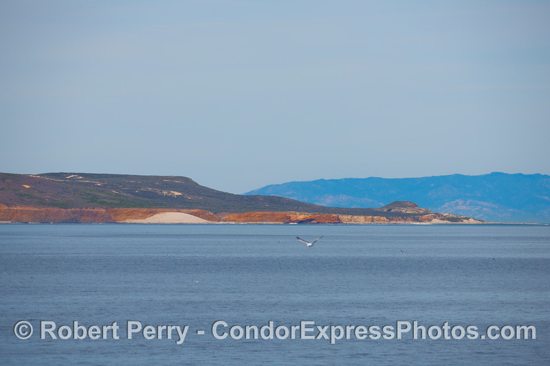 On the back side of San Miguel Island - Cardwell Point, southeastern view.  Santa Ynez mountains on the mainland can be seen in back.