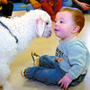 Seven-month-old Carter Hauk, was almost nose to nose as he met Buttons, a 1 month old Angora goat at Harwin Elementary School during the StrongStart Probgram. The Barnyard Buddies mobile petting zoo visited 3 classes at the school Thursday. Citizen photo by David Mah