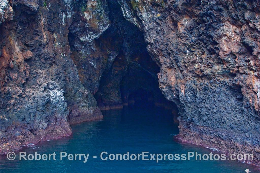 The world's longest sea cave, the Painted Cave, on Santa Cruz Island.