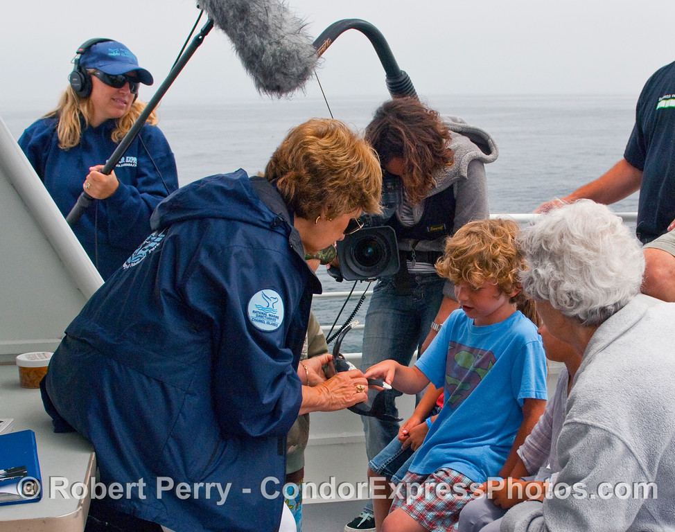 CINC naturalist Valerie Olson explains the Humpback Whale (Megaptera novaengliae) basics to a young whaler on board the Condor Express as Michell Stevens prepares a NOAA video and Shauna Bingham captures the audio.