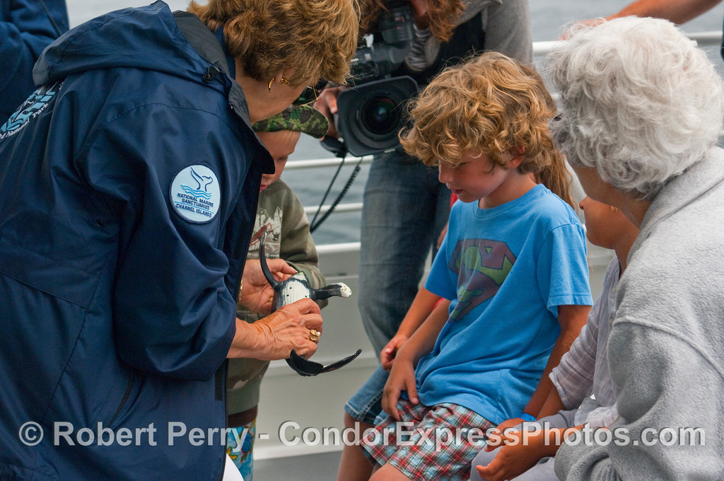 CINC naturalist Valerie Olson at work with young whalers on board the Condor Express.