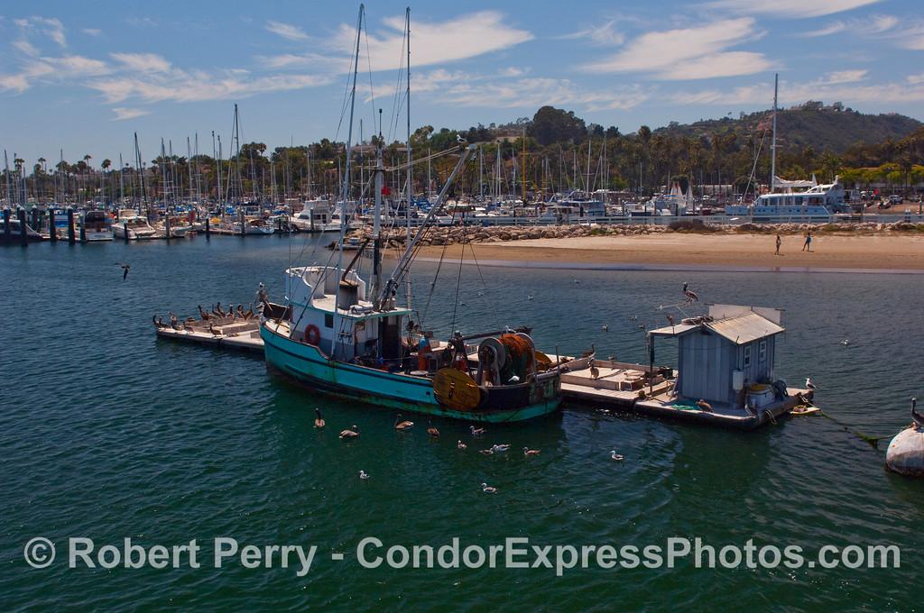 The seiner Kay-D does some shipboard maintenance alongside the bait barge inside Santa Barbara Harbor.