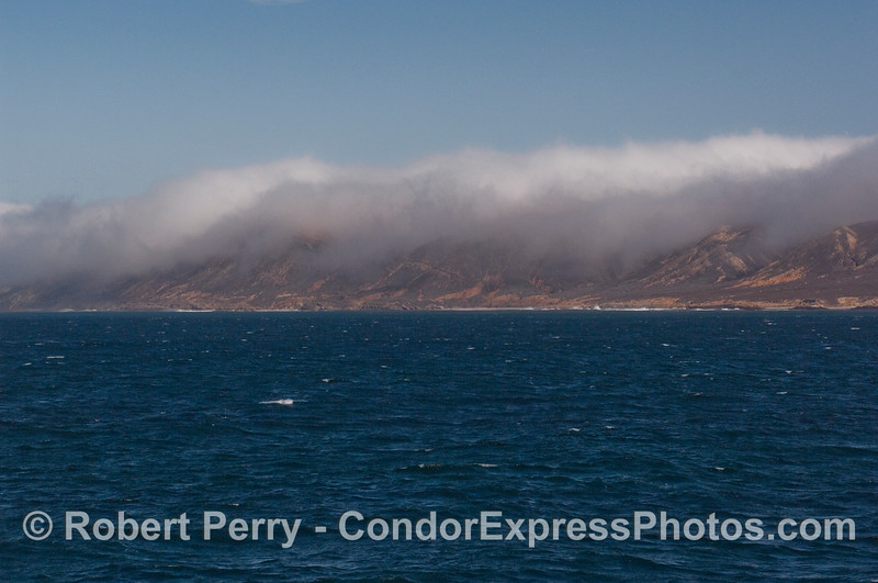 Fog spills over the southern side of San Miguel Island.